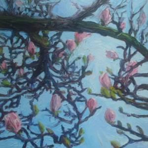 Magnolia Inet version